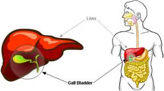 gall bladder signs picture 2