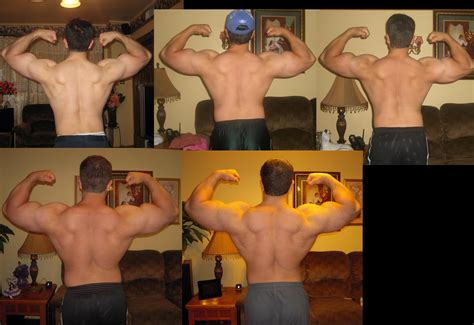 testosterone deca dianabol results picture 6