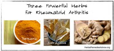 herb for rheumatism and arthritis in the philippines picture 5