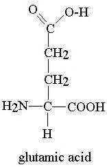 l glutamic acid for digestion picture 11