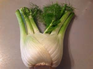 canning freezing fennel picture 9