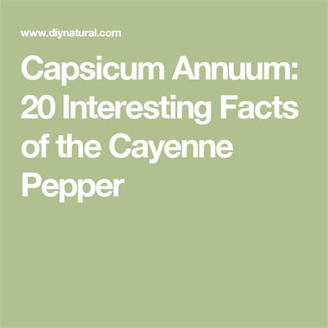 cayenne pepper increases erection size and strength picture 14