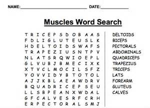 muscle word search picture 2