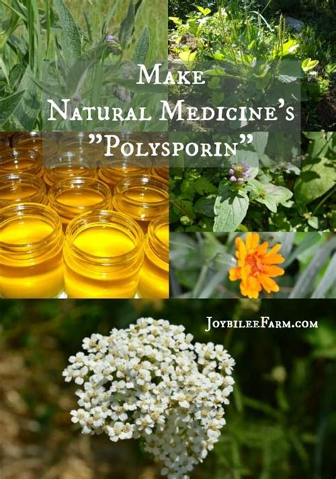 herbal drugs herbs that give you euphoria picture 4