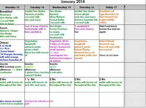 a free sample diet plan picture 10