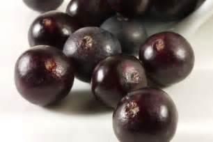 acai berries research picture 9