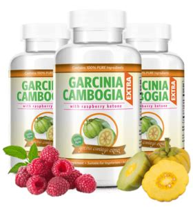 where can i buy healthy choice gar inia picture 2