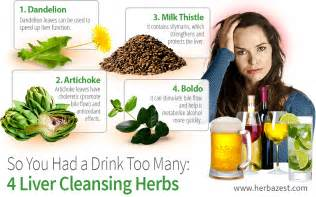 african herbs for liver cleansing picture 1
