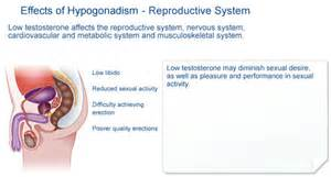 effects on aging on the reproductive system picture 5