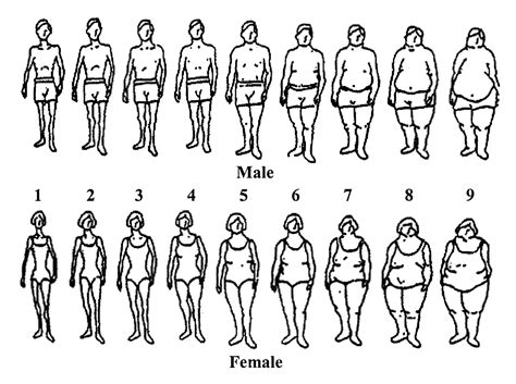 male to female developing feminine body fat picture 1