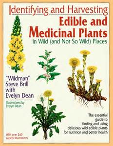 encyclopedia of herbs names and their benefits in rdu picture 6