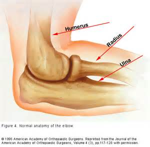 elbow joint pain picture 14