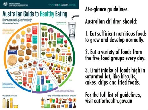 breads and cereals-australian dietary guidelines picture 1
