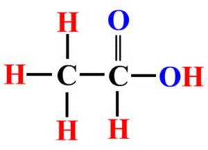 glacial acetic acid formula for wart picture 2