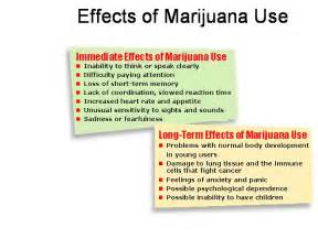 effects of marijuana on h picture 6