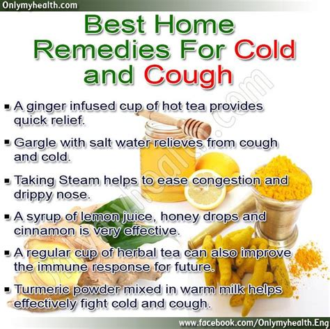 home or herbal remedies for allergy cough picture 2