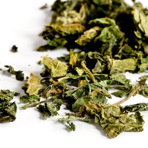 yarrow herb reviews picture 9