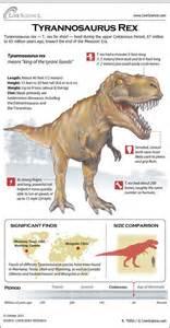 t rex teeth info picture 1