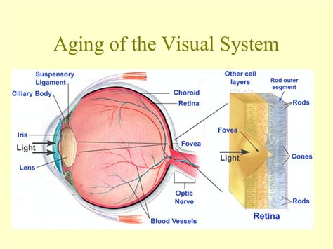 ageing systems picture 1