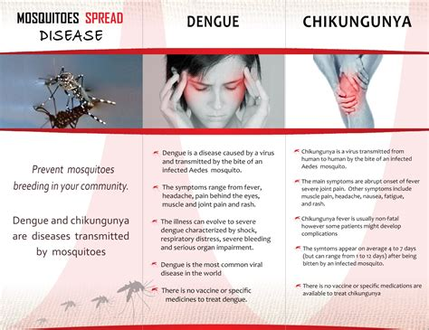 chikungunya virus symptoms and signs picture 2