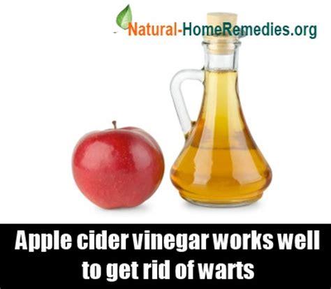 apple cider vinegar treatments genital warts picture 7
