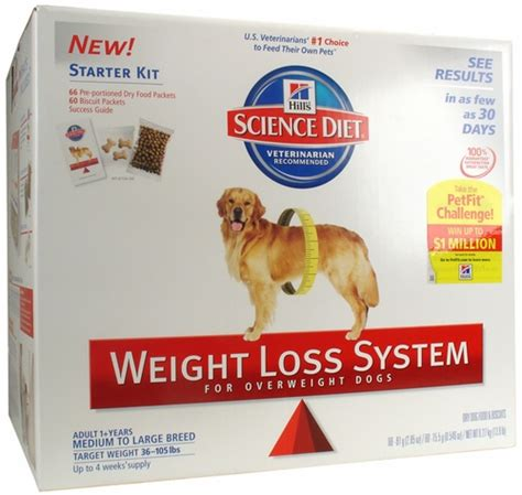 fast weight loss system picture 2