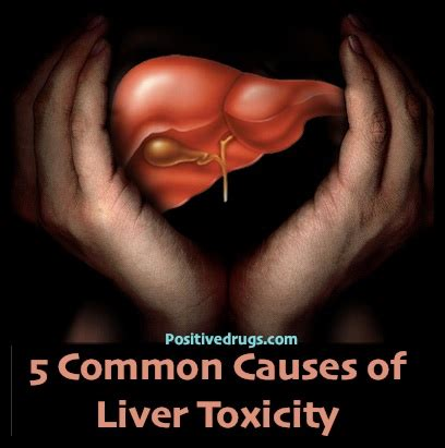 fda approved liver supplements picture 3