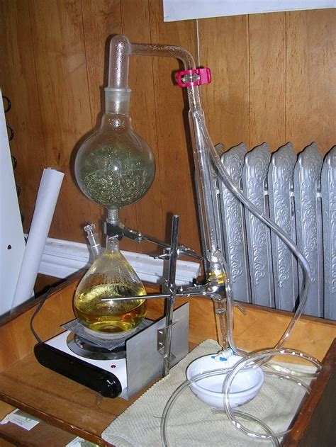 distilling oils from herbs with butane picture 2