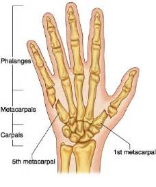 most common injuries to fifth metatarsal phalangeal joint picture 7