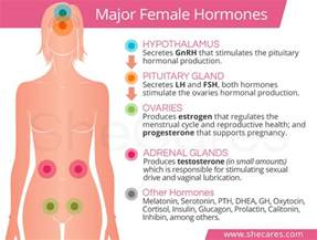 treatment of hormonal disease likoria in girls in picture 6