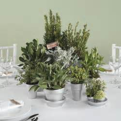 Table centerpieces herbal picture 1