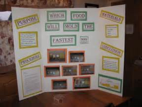 science fair projects yeast picture 2