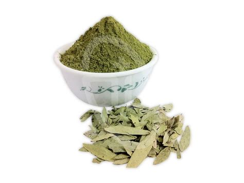 gout herbal picture 14