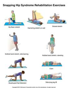 exercises for hip joint tharapy picture 14