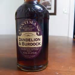 dandelion and burdock picture 1