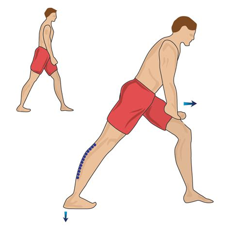 calf muscle exercise picture 13