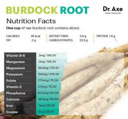burdock extract or burdock tea for cancer picture 1