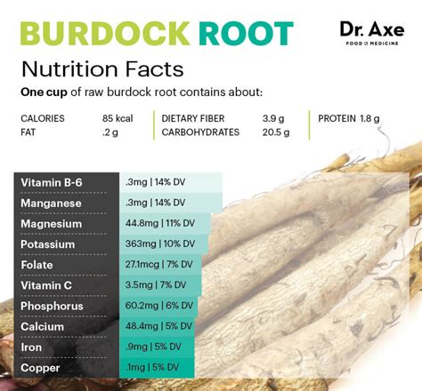 burdock root and cancer picture 10