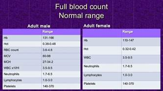 complete blood count flow sheet picture 2