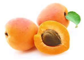 apricots health picture 10