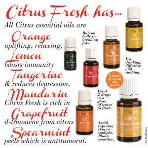 orange essential oil benefits for gums & h picture 11