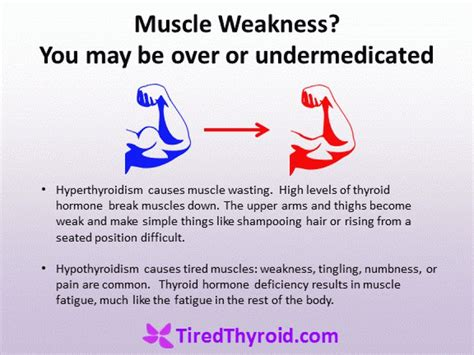 fatigue muscle weakness diarohea are symptoms of what picture 1
