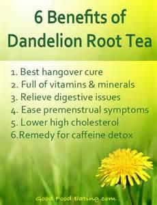 benefits of dandelion tea picture 2