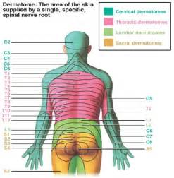 neurologic symptoms of herpes zoster picture 3