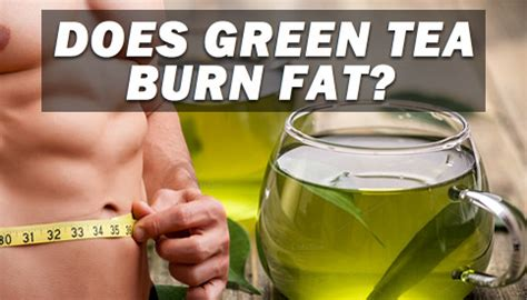 does topamax burn fat picture 1