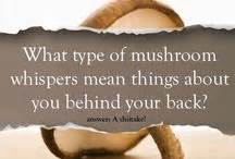 facts about fungi picture 6