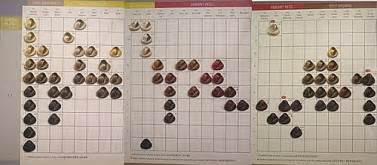 koleston chart picture 9