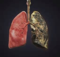 smoke in the lungs picture 7