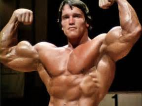 arnold schwarzenegger muscle pictures picture 5