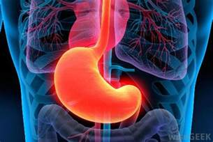 information on gastrointestinal picture 9